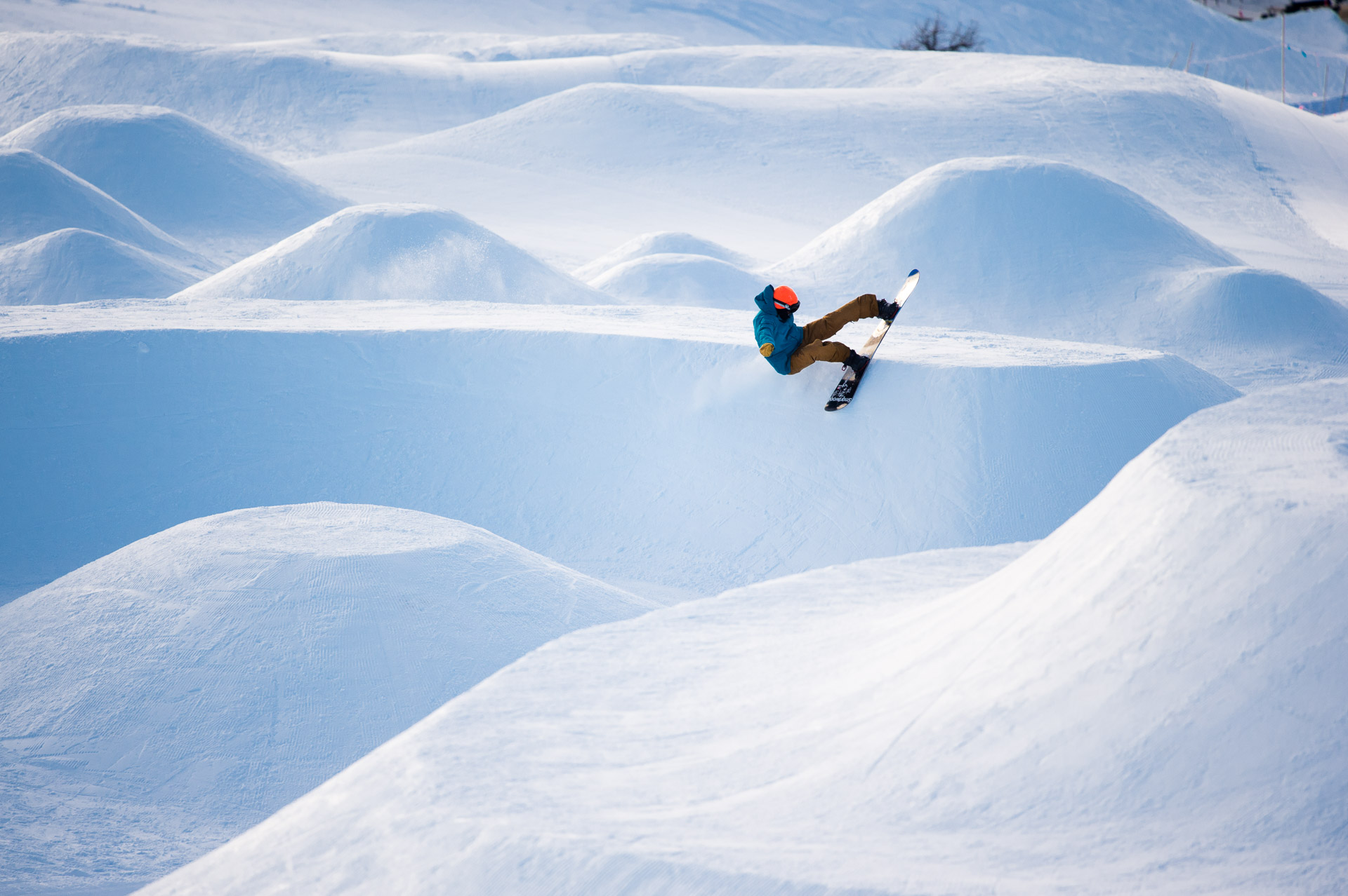Blair Habenicht - Holy Bowly / Sunshine Village – Tim Zimmerman Photo